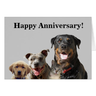 A Very Happy Anniversary!