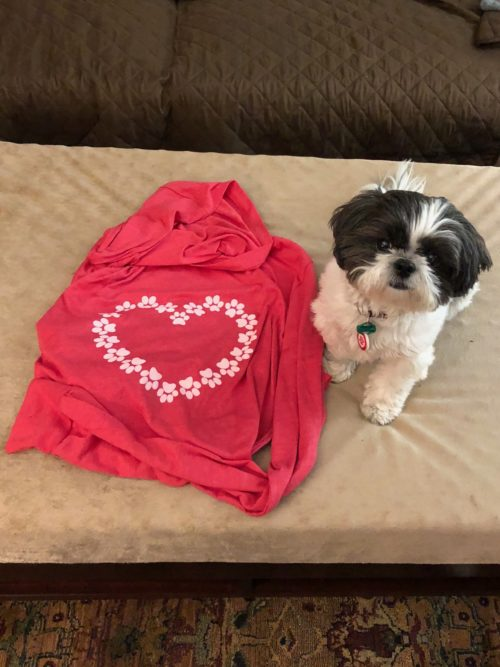 Our new favorite, the LovePaws hoodie.  Cute Ava is not included!